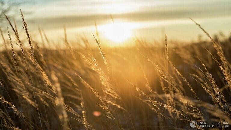 """علماء: الشمس كانت طوال الصيف في """"سبات"""""""