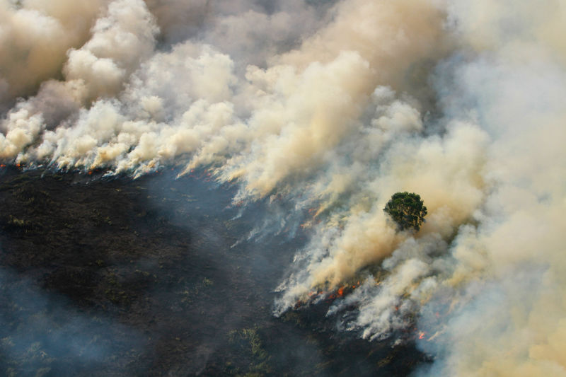 رئيس وزراء ماليزيا يبدي قلقه للرئيس الإندونيسي من الضباب الدخاني على الحدود