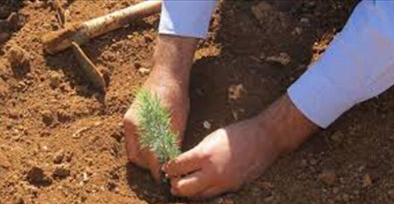 مجموعة ABC تتبرع بمبلغ 100 مليون ليرة لجمعية جذور لبنان للمساهمة في إعادة تشجير الغابات