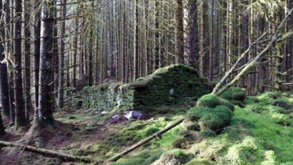 سر المباني القديمة الغامضة في غابات إسكتلندا!