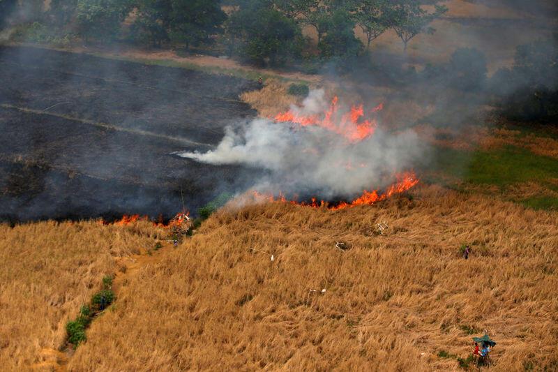وكالة إندونيسية تتوقع أن يساعد موسم الأمطار في إخماد حرائق الغابات
