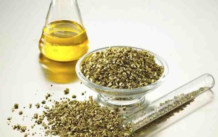 Sed de oro para la salud