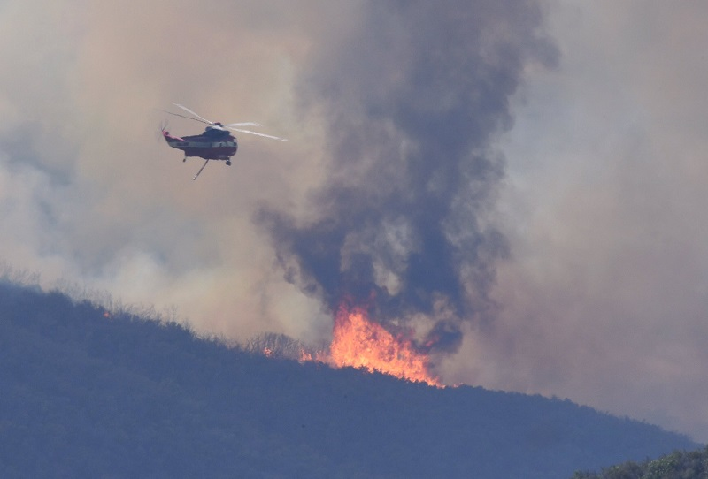 الطائرات تكافح حريق سيدني والسلطات تخشى ألا تتمكن من السيطرة عليه قبل أيام