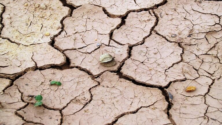 كشف سر السطح الصخري للأرض