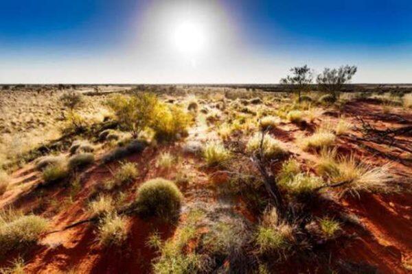 الشرطة الأسترالية تعثر على امرأة حية في الصحراء بعد أسبوعين من اختفائها