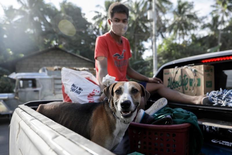 سكان الفلبين يستعيدون حيواناتهم ومتعلقاتهم مع انحسار الخطر البركاني