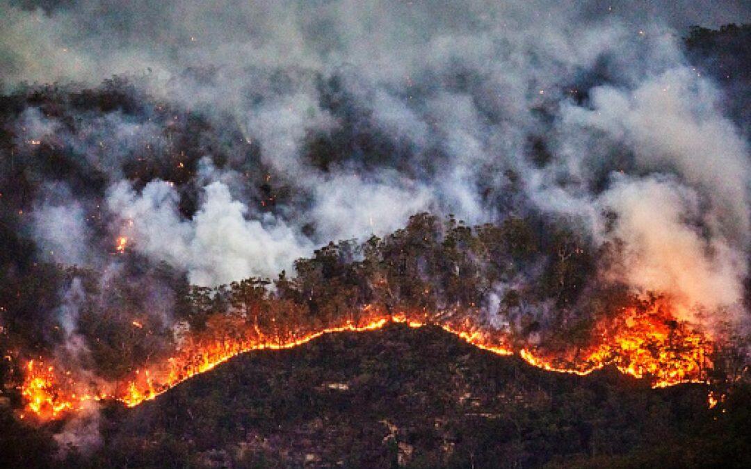 دخان حرائق استراليا يهدد العالم!