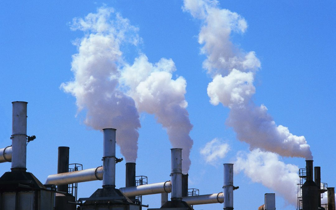 أهم 10 نصائح لتقليل انبعاثات الكربون!