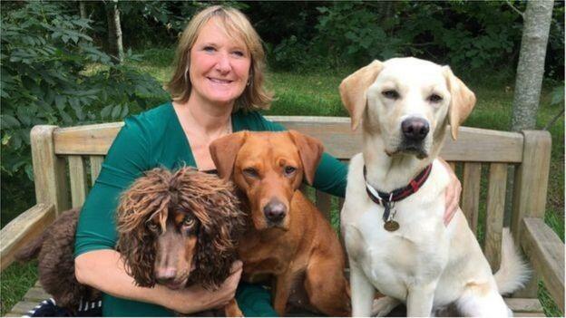 تدريب كلاب لاكتشاف المصابين بالوباء
