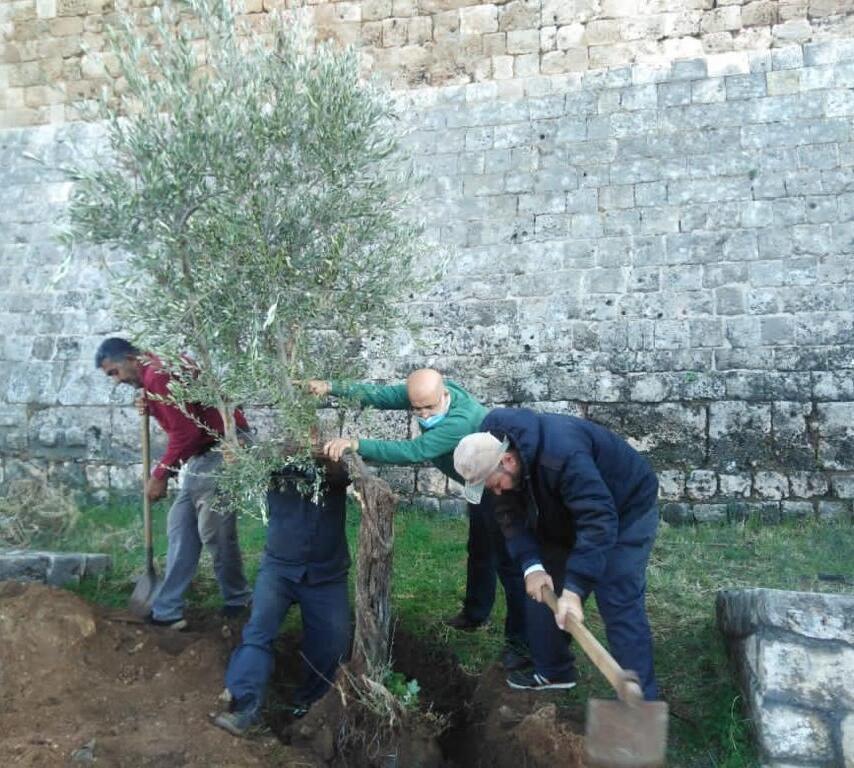 بلدية طرابلس واصلت حملة التشجير