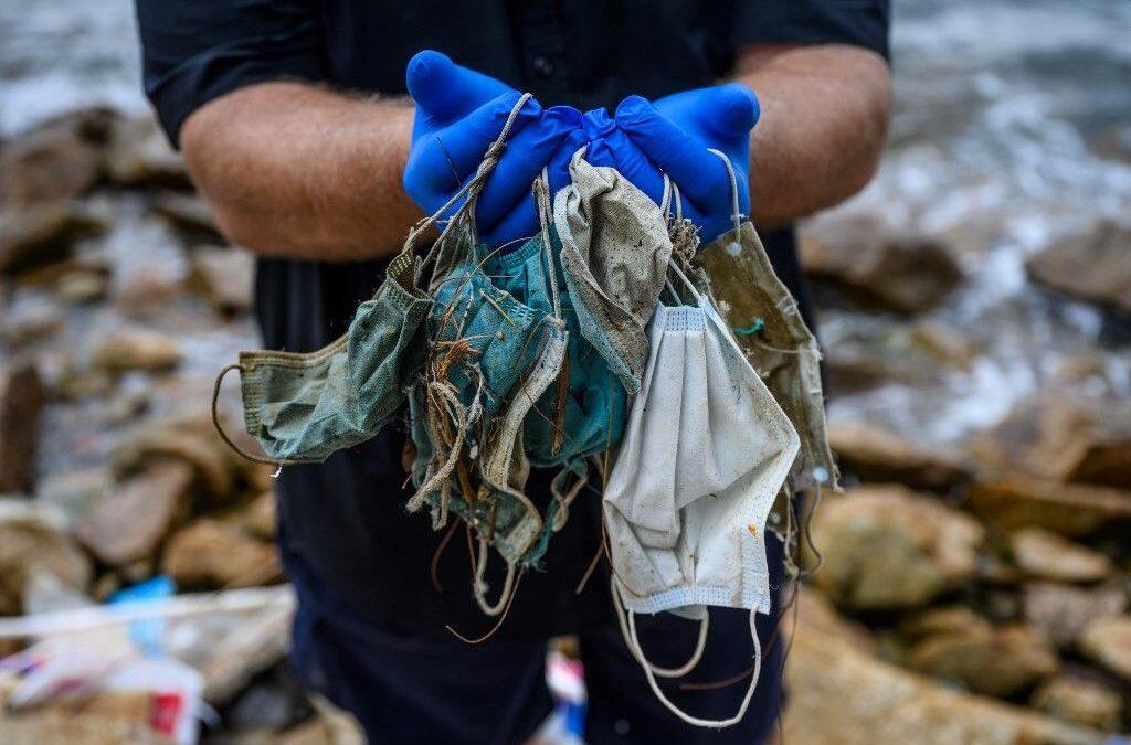 الكمامات المستخدمة خطر على الحيوانات والنظم البيئية
