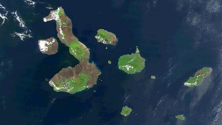 العلماء يحلون لغز النظام البيئي الاستثنائي لجزر غالاباغوس
