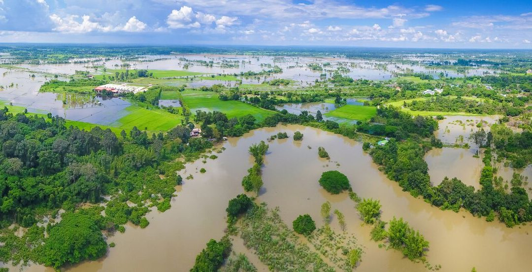 مضاعفة اتخاذ الإجراءات من أجل التكيف مع تغير المناخ أو مواجهة أضرار بشرية واقتصادية خطيرة