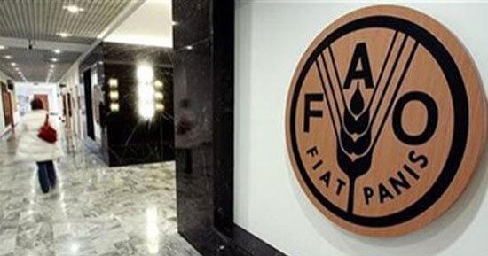 """""""فاو"""" تطلق مبادرة بـ104 ملايين دولار لمكافحة التصحر في 11 دولة أفريقية وآسيوية"""