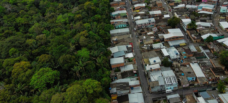 """""""المحافظة على الطبيعة وحمايتها"""" .. خطة أممية جديدة لإنهاء التدمير البيئي"""