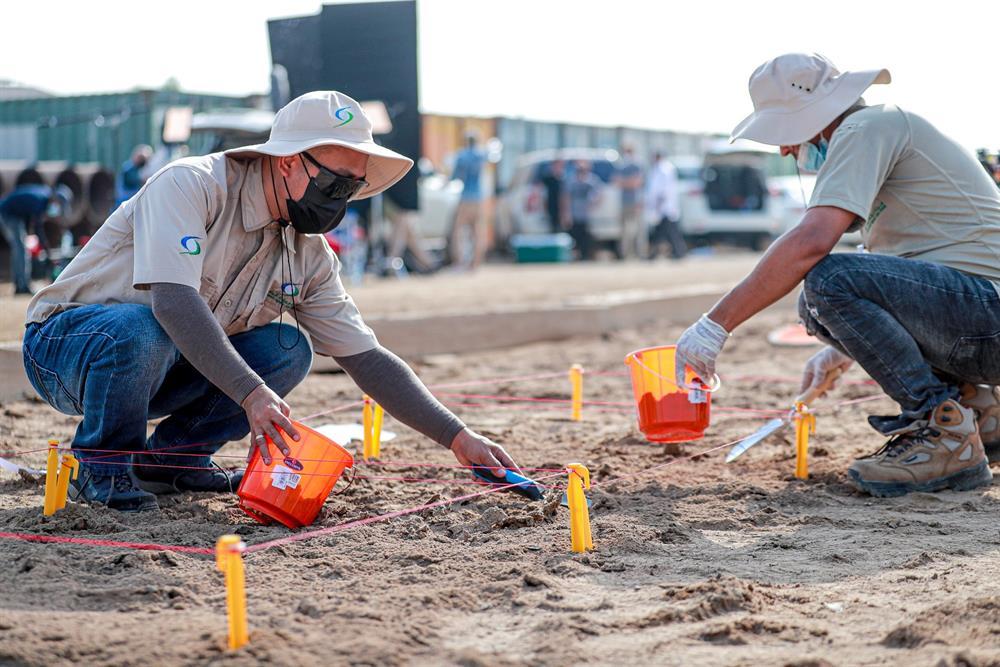 مراقبة جودة التربة باستخدام أحدث التقنيات