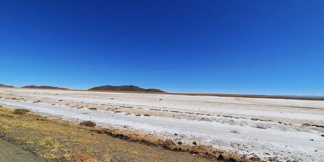 إطلاق الخارطة العالمية لأنواع التربة المتأثرة بالملوحة خلال مؤتمر افتراضي