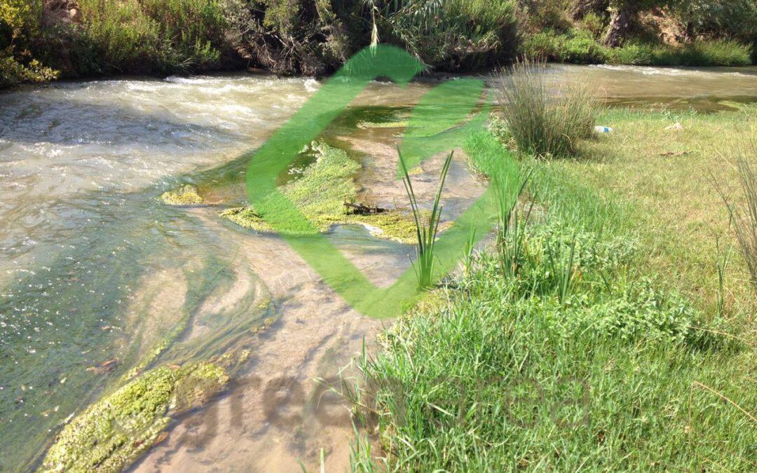 تلوث نهر الليطاني… من حيث المبدأ