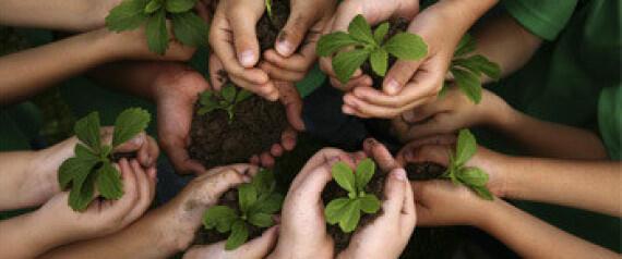 يوم الزراعة في مؤتمر تغير المناخ في مراكش