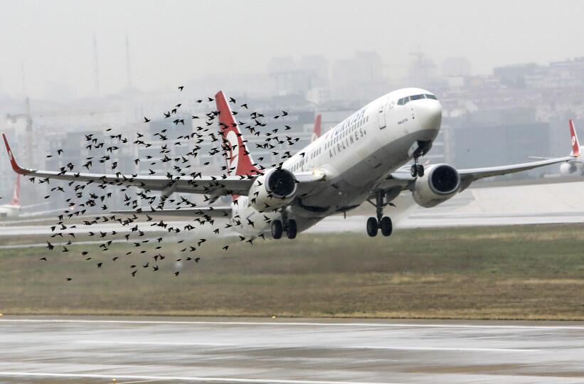 لا تناسب بين مستوى المخاطر وإجراءات الوقاية… لا أمان في مطار بيروت