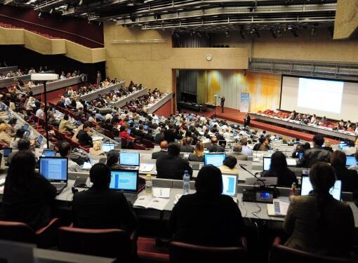 """إتفاقية """"روتردام""""… ازدواجية المعايير وتشابك مصالح الإحتكارات والدول"""