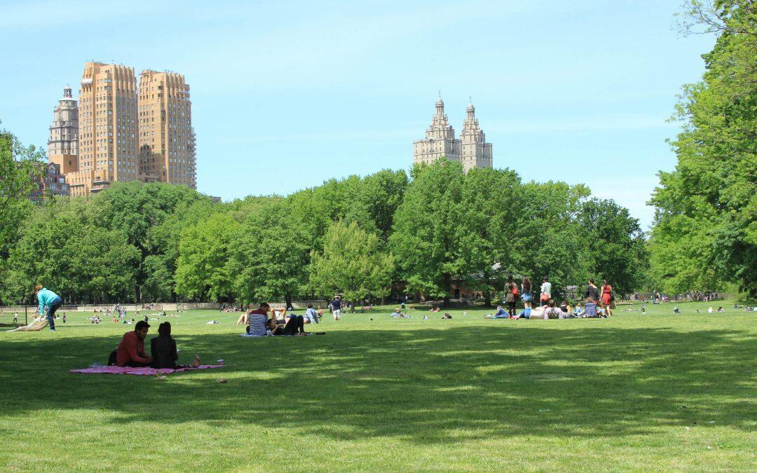 حدائق صديقة للبيئة لمواجهة تغير المناخ وتلوّث الهواء