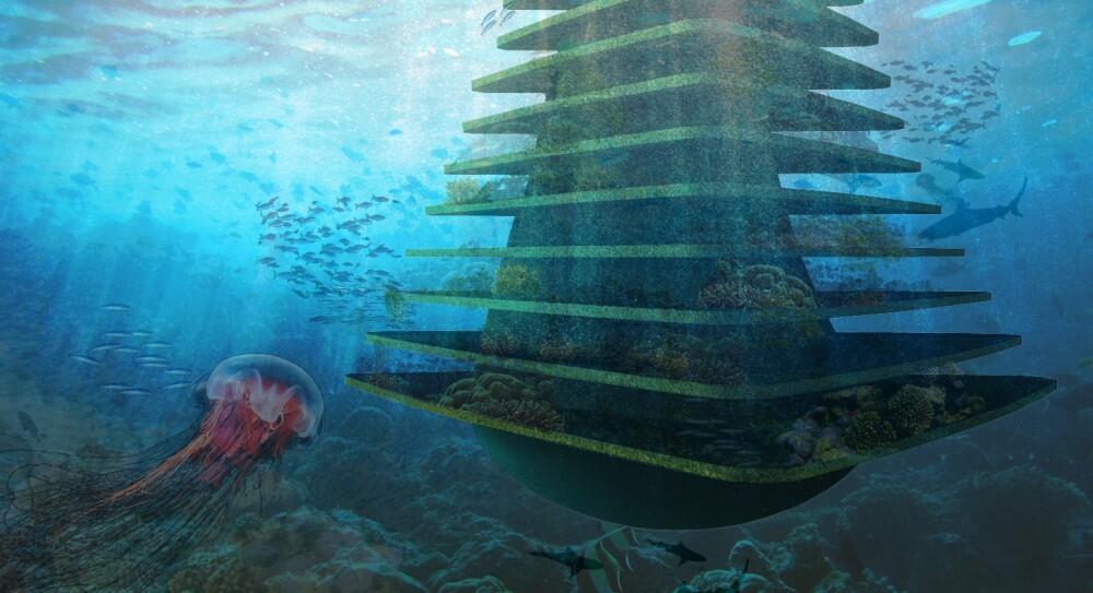 الزراعة المائية  لتعزيز الأمن الغذائي البحري
