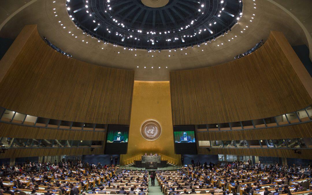 بلبلة في المؤتمر الثالث للهيئة العامة للأمم المتحدة للبيئة UNEA3 المنعقد في نيروبي