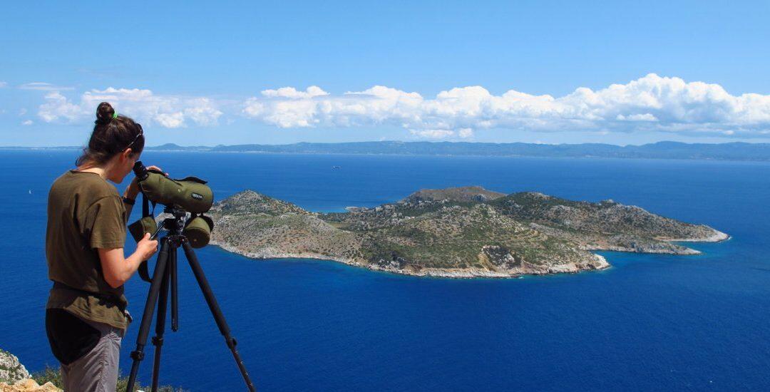 HOS / BirdLife Grèce navigue sur les hauts-plateaux politiques pour fournir une protection marine critique