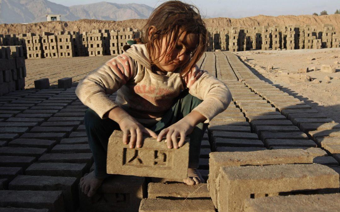 عمالة الأطفال: خطر يعيق تعليمهم ويحدّ من جهود تحقيق الأمن الغذائي والقضاء على الجوع