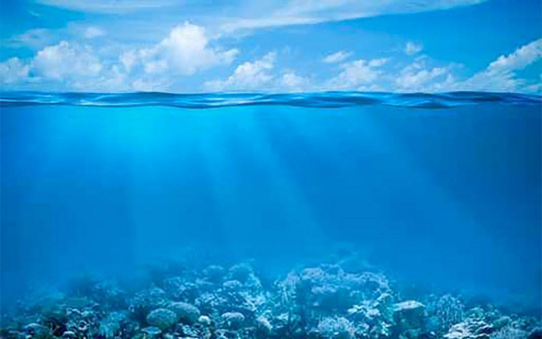 المحيطات: 13 في المئة فقط من مياها لا تزال بِكراً… والحل في المحميات البحريّة
