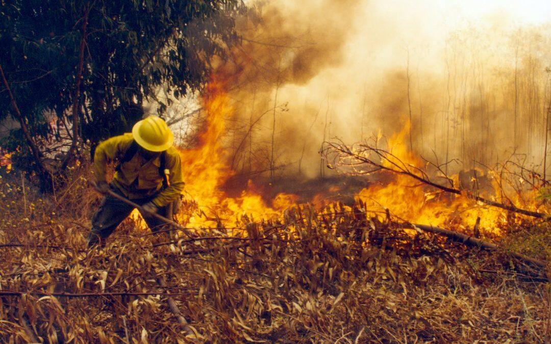 Los incendios de Bolivia han consumido 5,4 millones de hectáreas