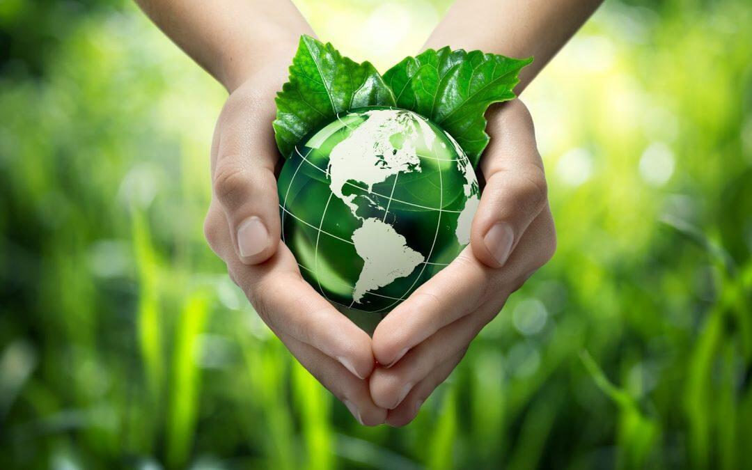 وزارة البيئة وما أدراك ما وزارة البيئة…