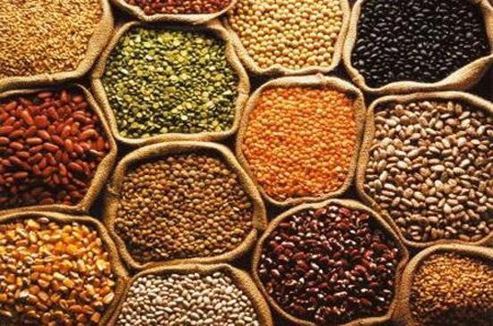 اليوم العالمي للبقول: مساهمة في الزراعة المستدامة وتحقيق خطة عام 2030 للأمن الغذائي