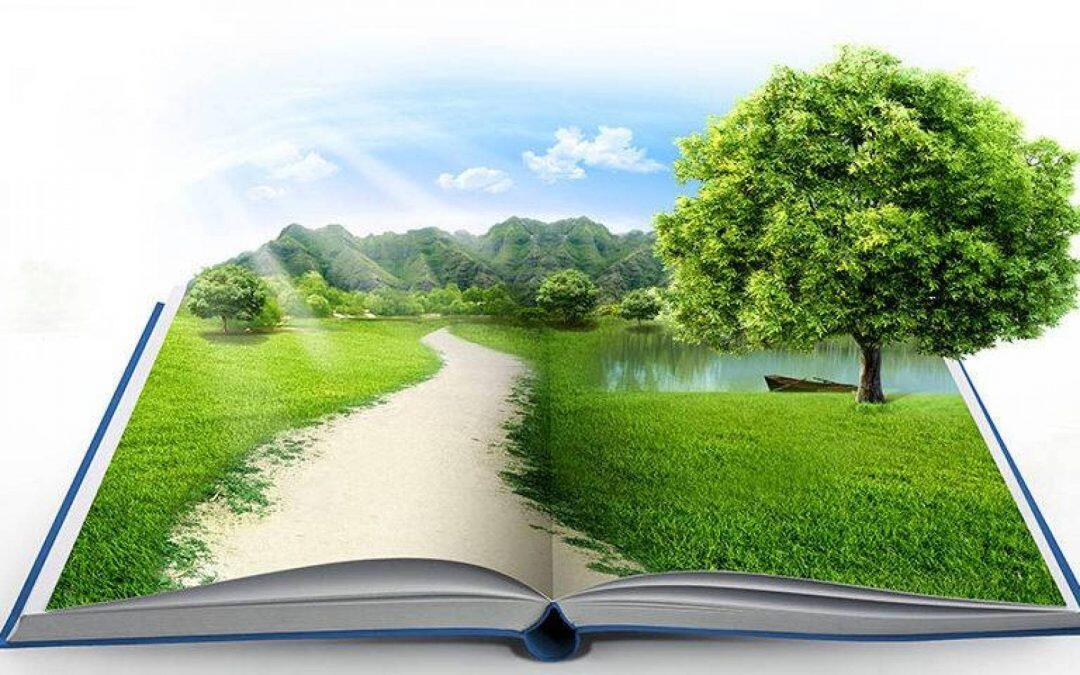 التنمية المستدامة والسياسات المتآزة المطلوبة