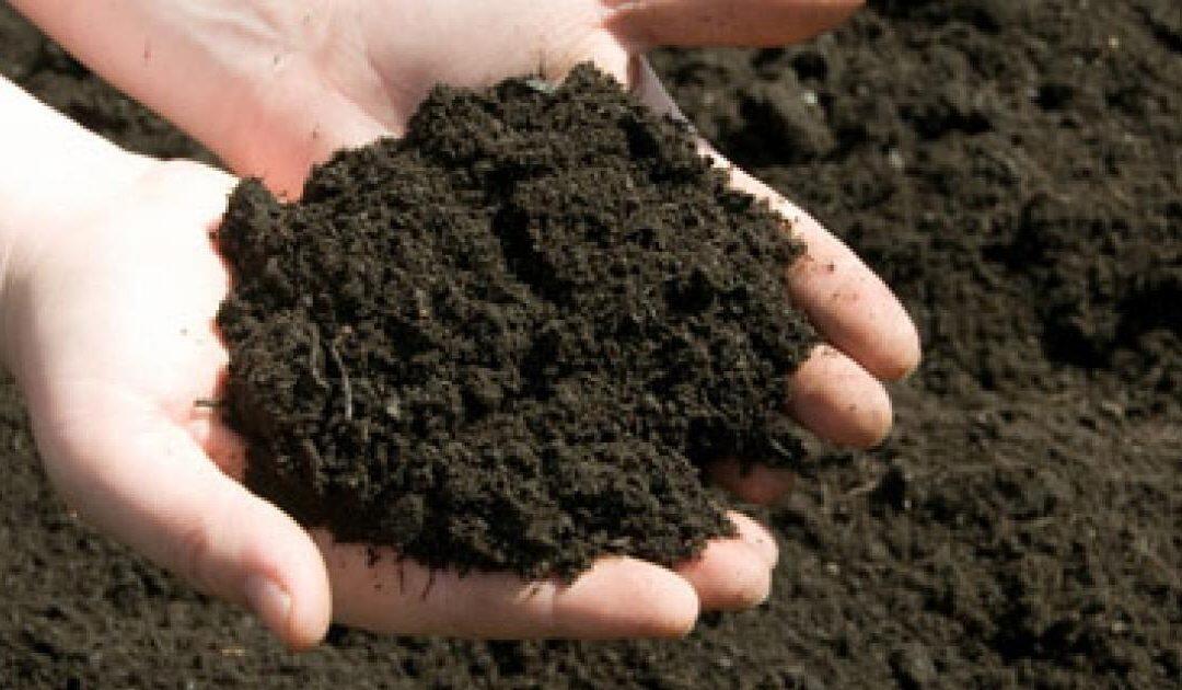 تآكل التربة : كل خمس ثوانٍ نخسر بمعدل ملعب واحد من ملاعب كرة القدم
