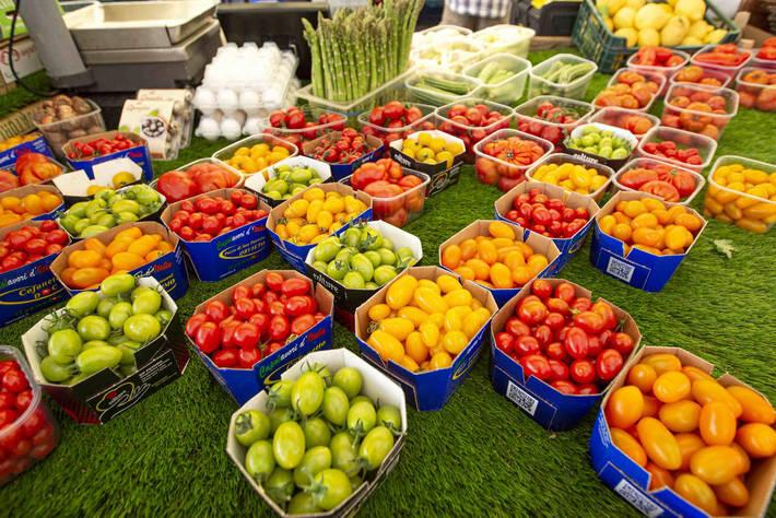 تقرير جديد: الإنتاج الزراعي العالمي سيرتفع 15 %…و25% في أميركا اللاتينية عام 2028
