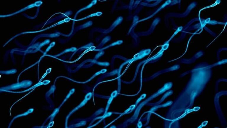 تقنية مثيرة للجدل قد تسمح بتحديد جنس المولود في التلقيح الاصطناعي!
