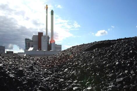 """استخدام فحم """"جرادة"""" في تخزين الطاقة؟"""