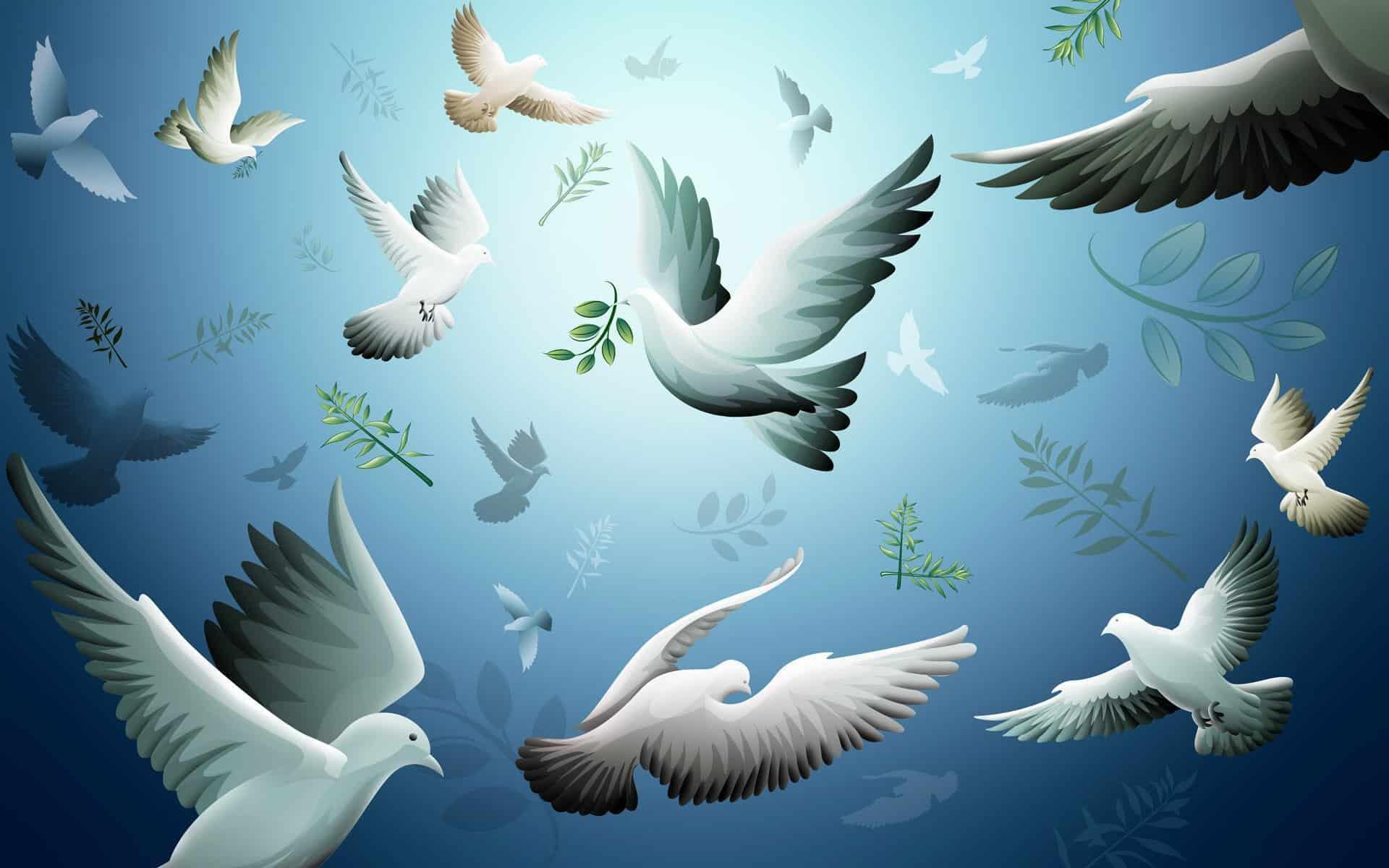 في اليوم العالمي للسلام  .. حال الطوارىء المناخية تهدّد سبل العيش والسلام!