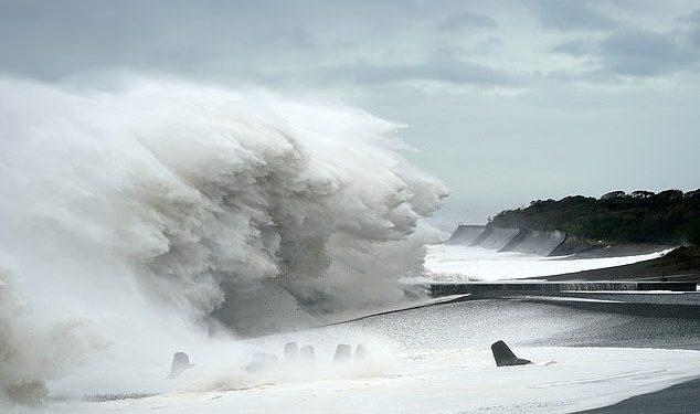 اليابان تستعين بقواتها بعد إعصار اجتاح طوكيو وأودى بحياة 23