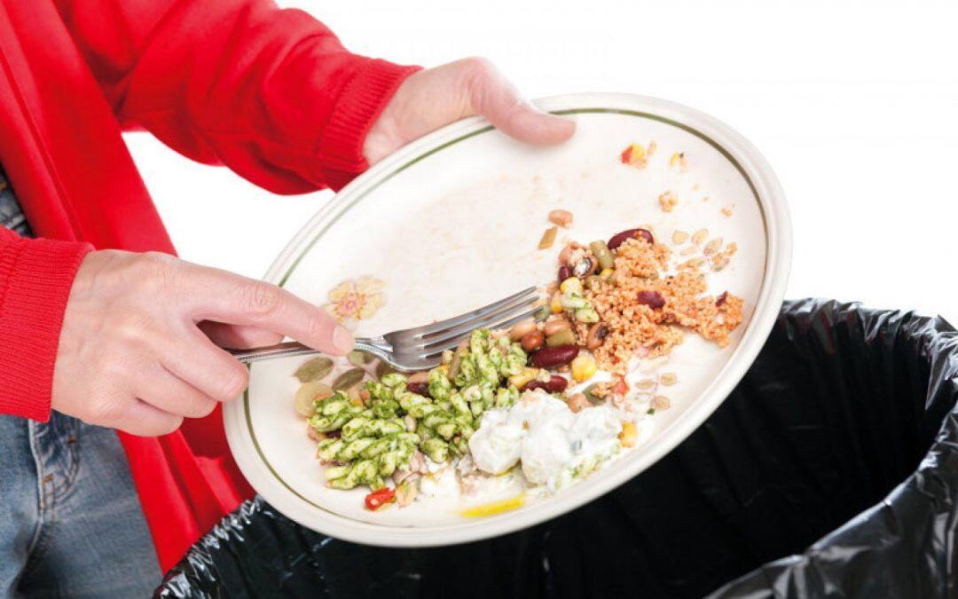 الفاو: العالم يخسر أغذية بـ 400 بليون دولار سنوياً أثناء نقلها من المُنتِج إلى المتَاجِر