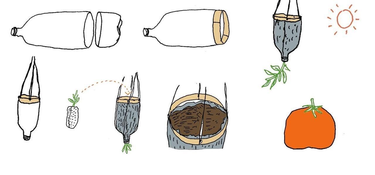 make-upside-down-tomato-planter-using-empty-soda-bottle.1280x600-50