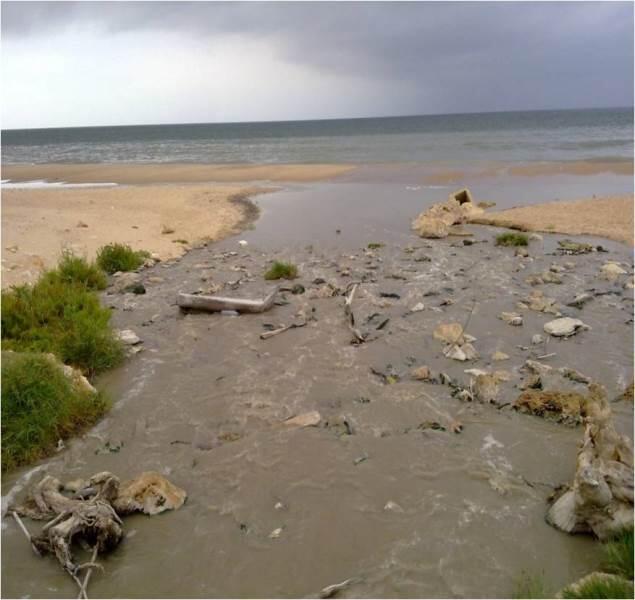 ندوة للمنتدى العاملي عن تلوث المياه السطحية والجوفية