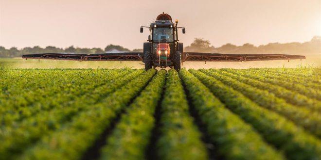دراسة : إمكانية إطعام 10 بلايين شخص  دون الإضرار بالبيئة عبر تغييرات شاملة