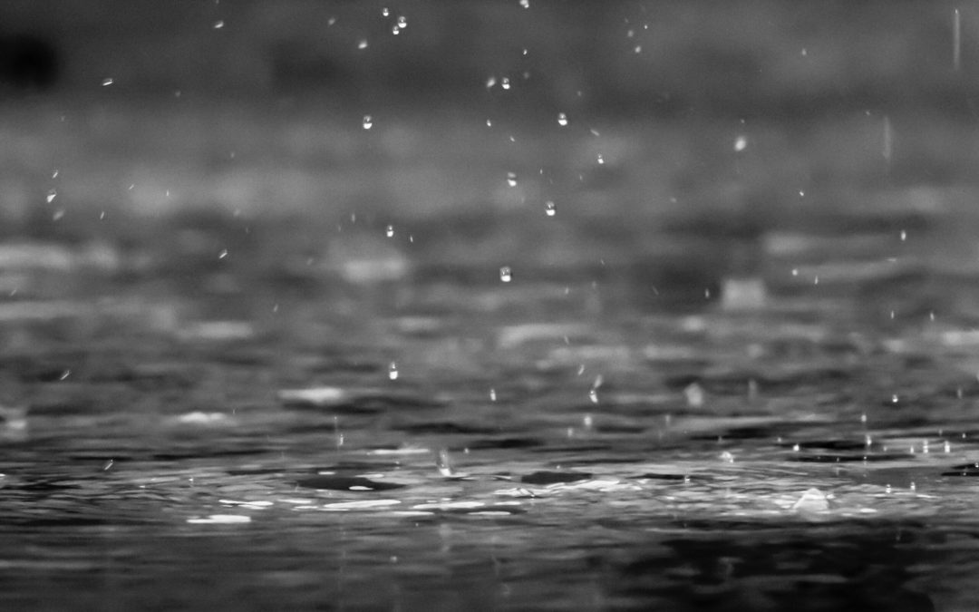 المطر نعمة و نقمة !