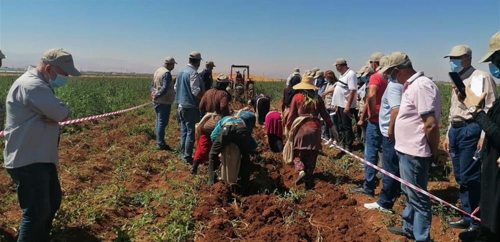 وزارة الزراعة اللبنانية تطبّق مشروع الحدّ من التلوث بالمواد الكيمياوية