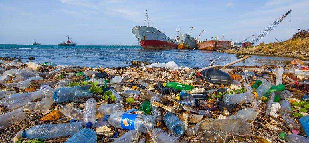 كمية هائلة من النفايات في المتوسط